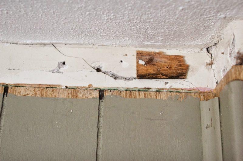 Штукатурим деревянную стену в доме