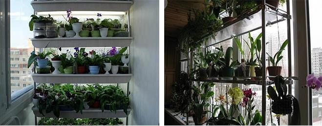 Стеллажи для цветов на балконе