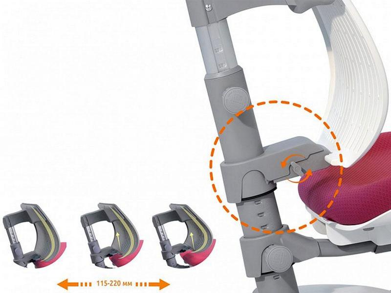 Многие производители дополняют ортопедические модели возможностью регулировки изгиба для принятия естественного положения