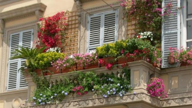 Кашпо из цветов на перила балкона